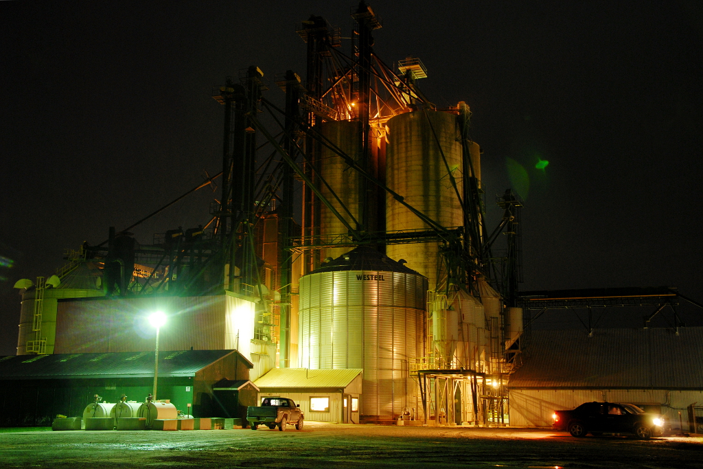 Thompson's grain elevator at the peak of corn harvest.