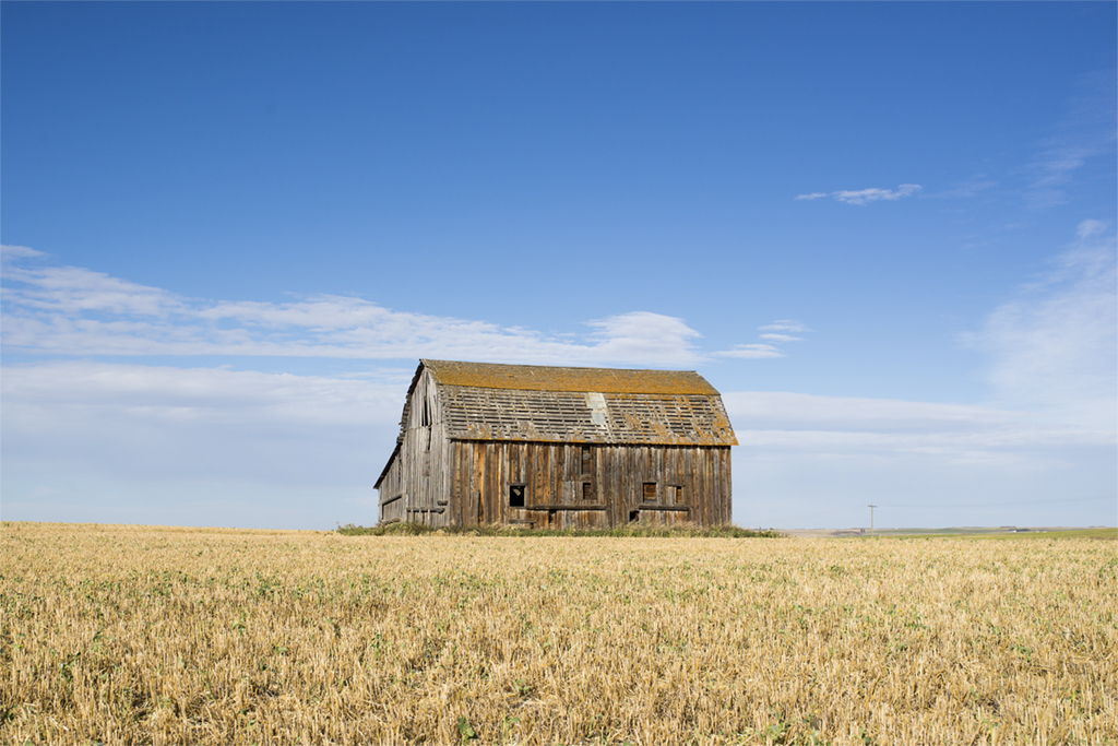 An abandoned barn near Trochu, Alberta.