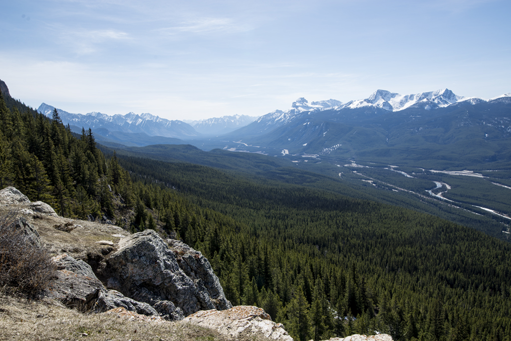 The Bow Valley from Castle Mountain lookout, in Banff National Park.