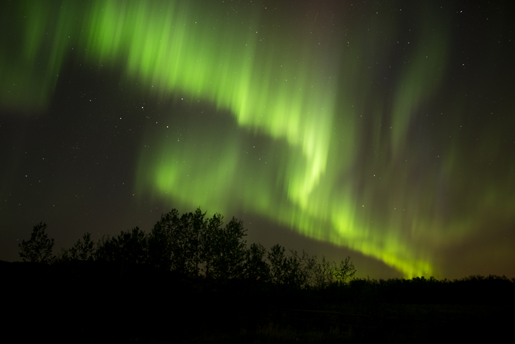 Northern lights west of Calgary.